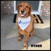 Ryder-edited-frame.jpg